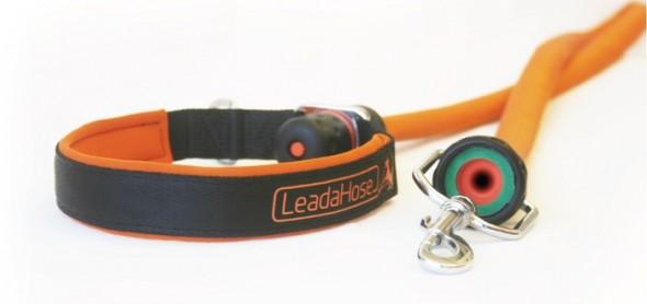LeadaHose 4