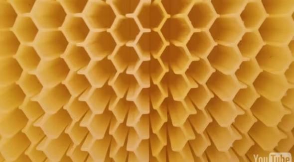 Flow Hive18