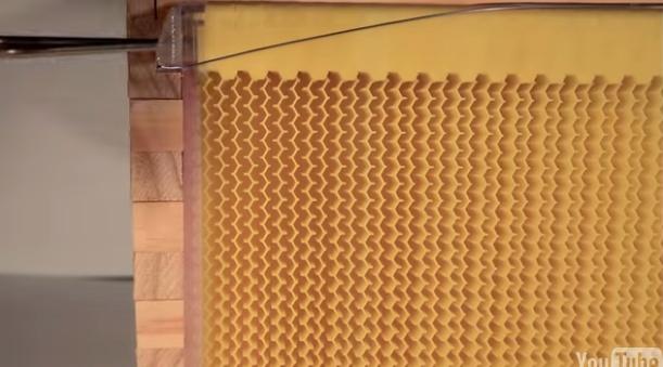 Flow Hive(養蜂箱) 回収モード