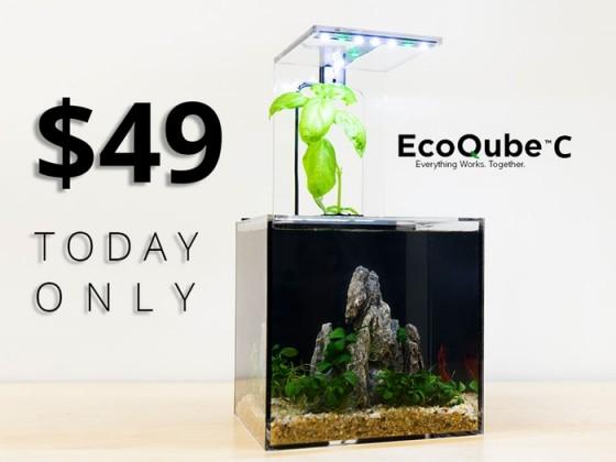 EcoQube C1