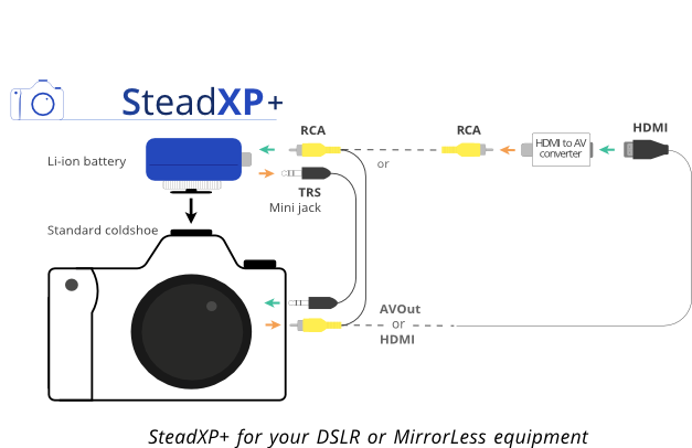 SteadXP12
