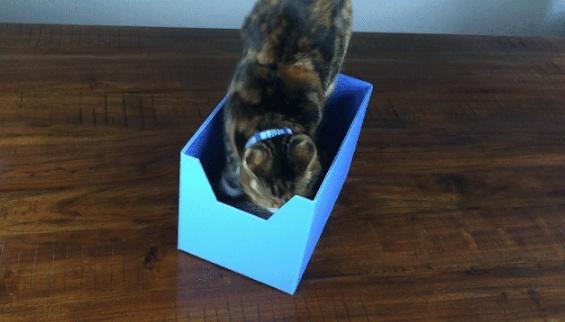 Boxy Bed 10