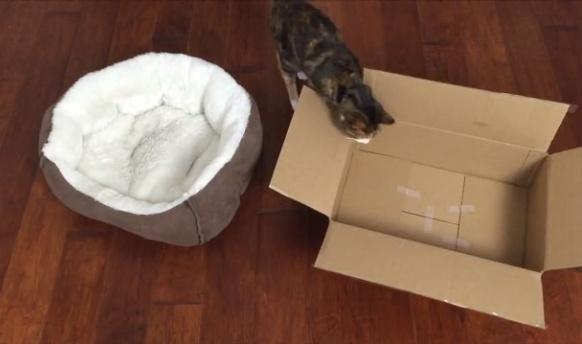 Boxy Bed 4