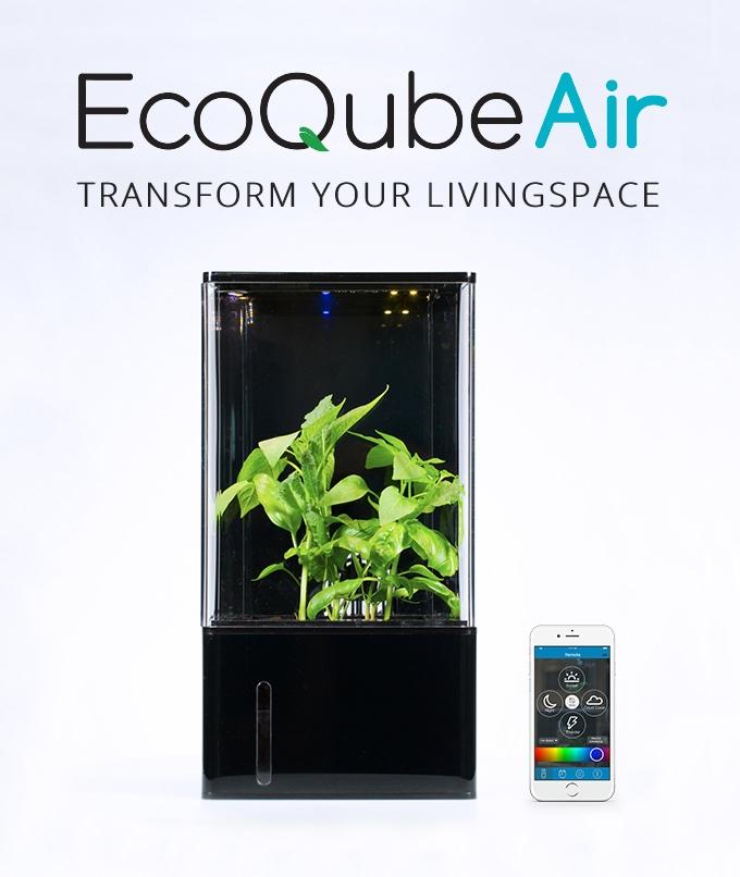 EcoQube Air1.jpg