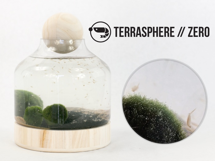 TerraSphere1.jpg