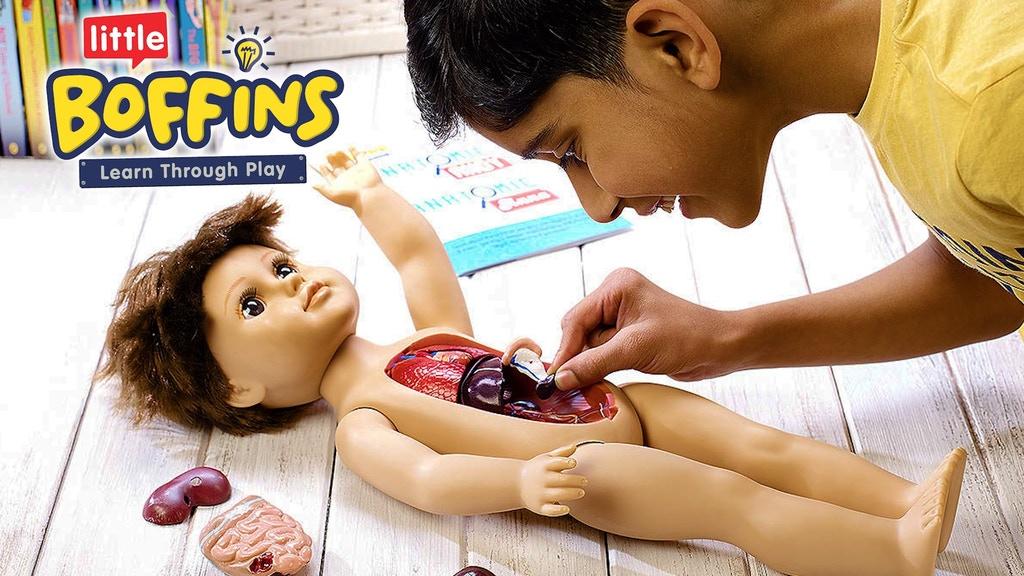 Anatomic1.jpg