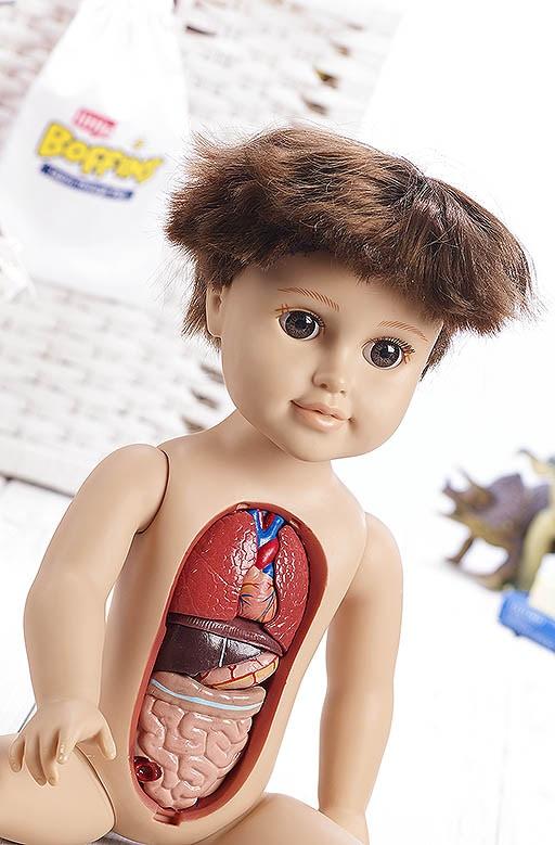 Anatomic3.jpg