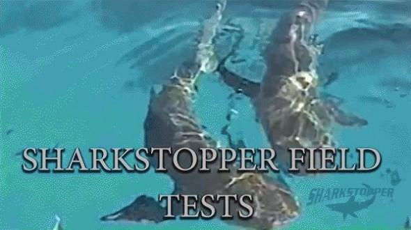 SharkStopper4