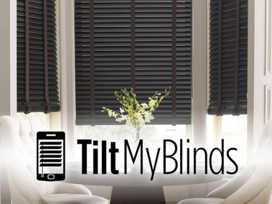 Tilt My Blinds1
