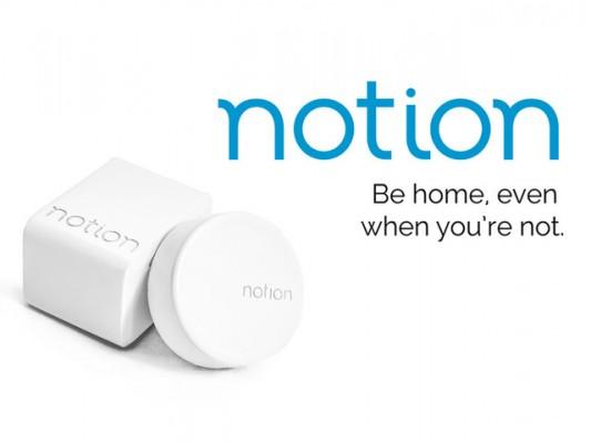 notion1