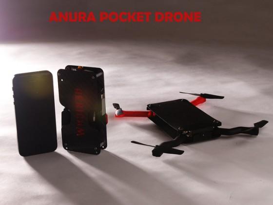 Anura1