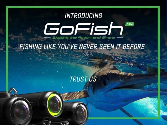 GoFish Cam1