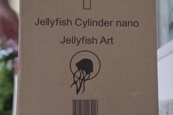 Jellyfish Aquarium 11