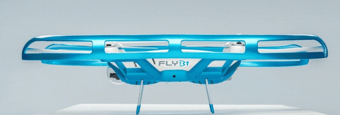 flybi6.jpg