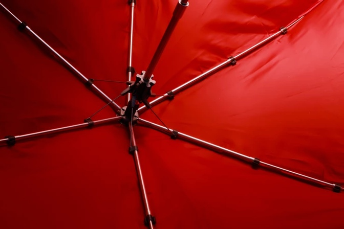 Cypress Umbrella 4.jpg