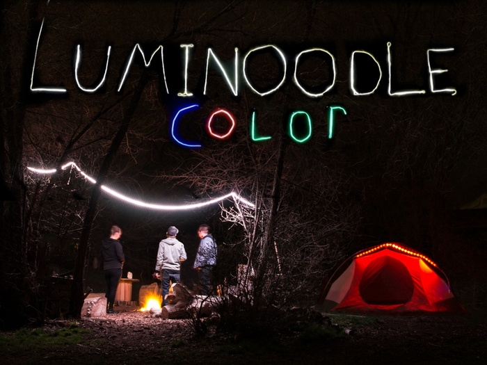 Luminoodle COLOR1.jpg