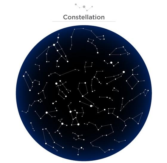 cosmos2.jpg