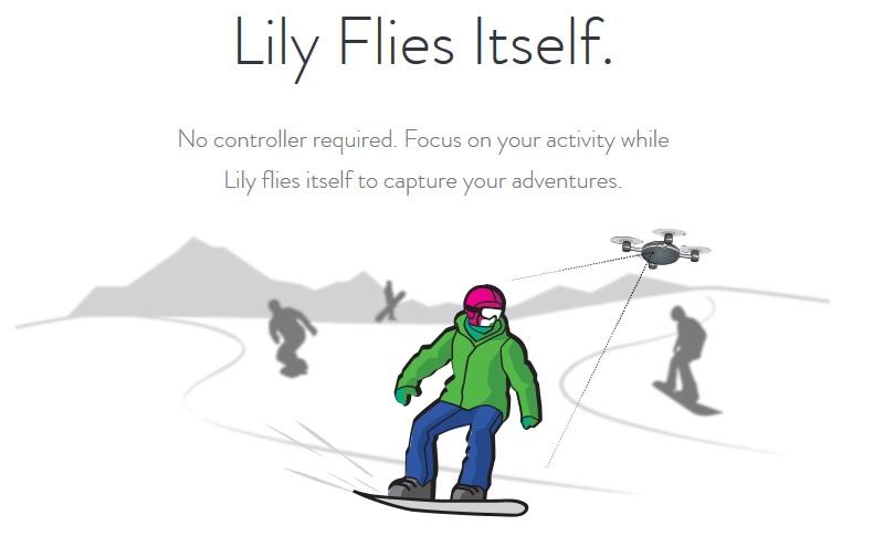 Lily04.jpg