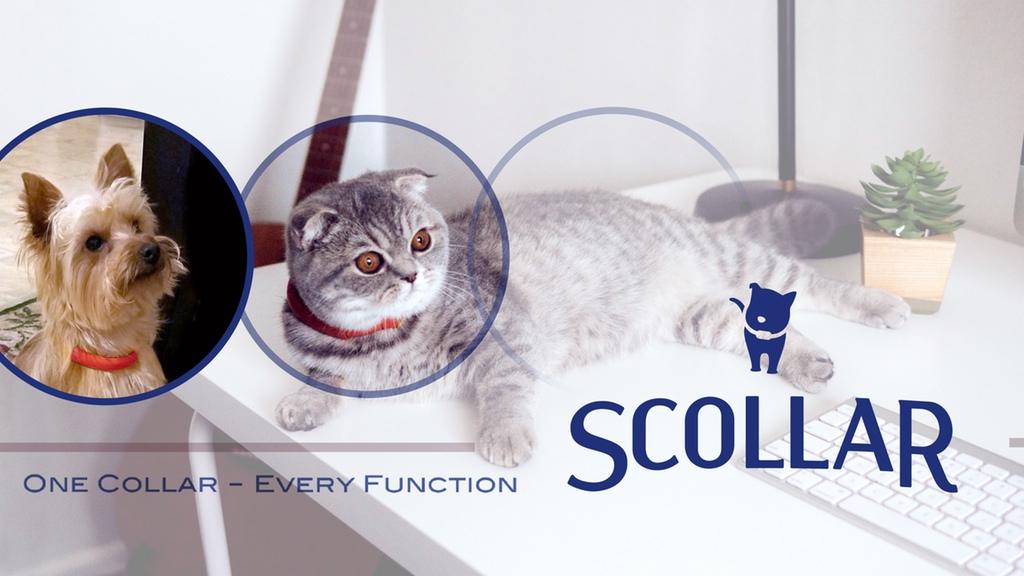 Scollar20.jpg