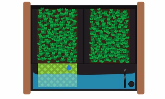 EcoQube17.jpg