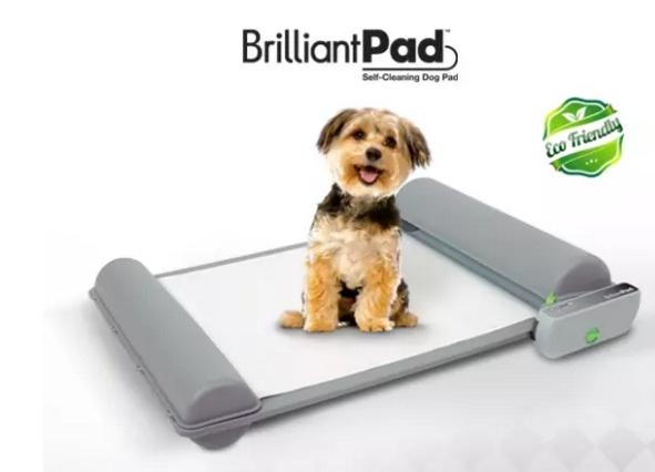 BrilliantPad12.jpg