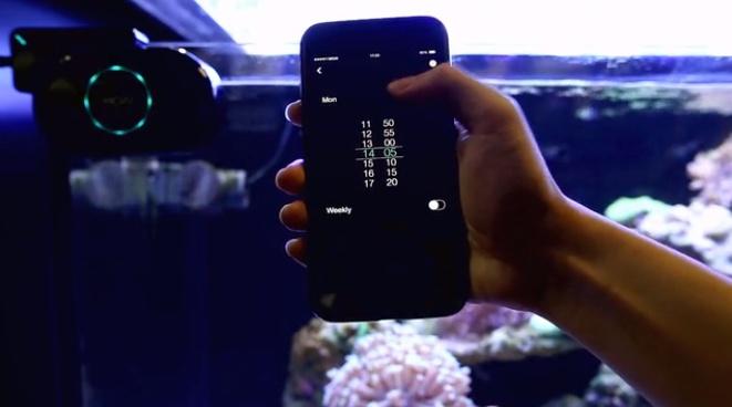 MOAI8.jpg