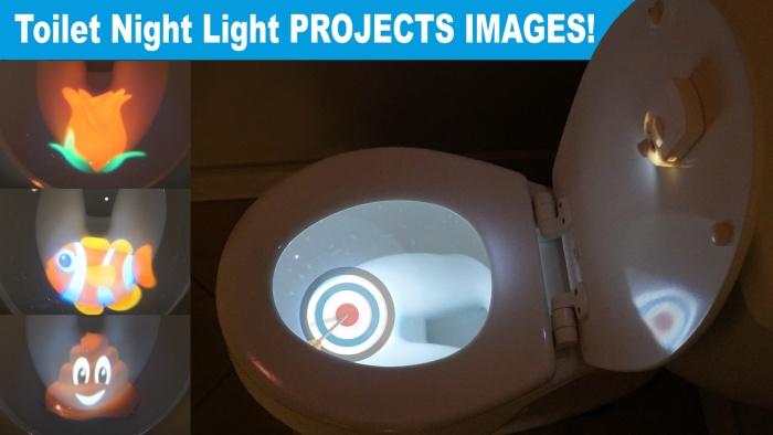 toilet light 1.jpg