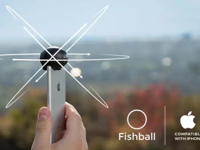 Fishball21