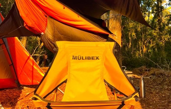MULIBEX26.jpg