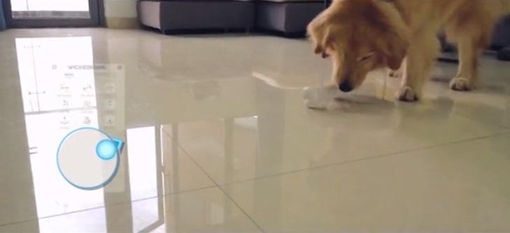 dog toy 6.jpg