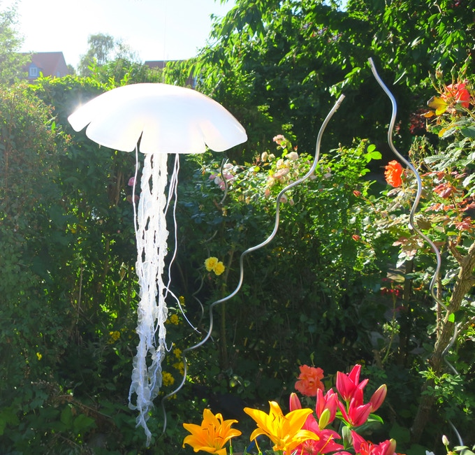Jellyfish6.jpg