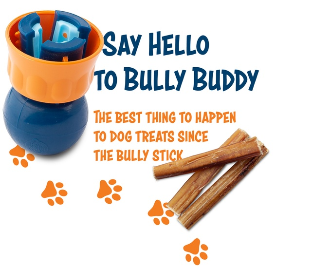 bully1.jpg