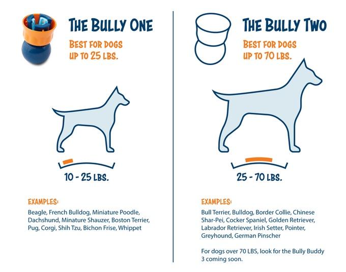 bully7.jpg