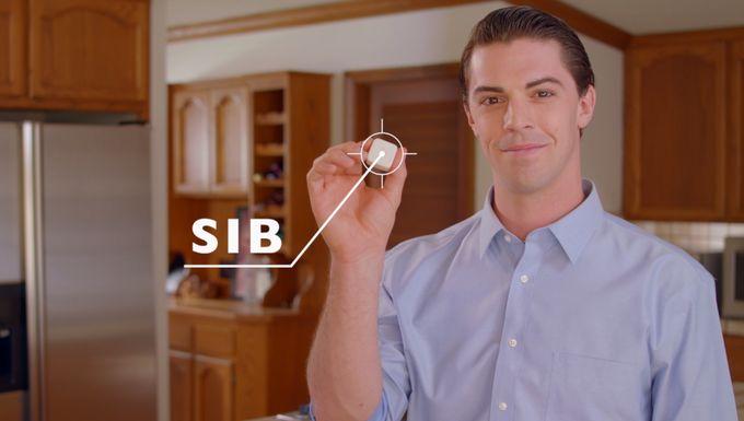 SiB2.jpg