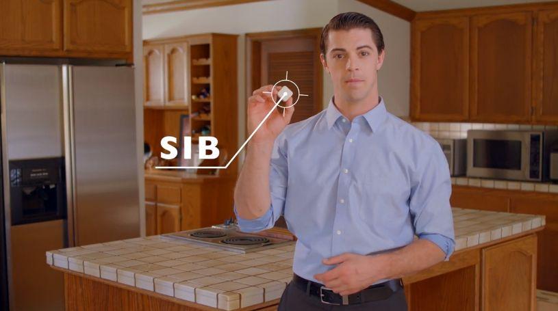 SiB9.jpg
