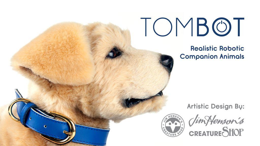 Tombot1.jpg