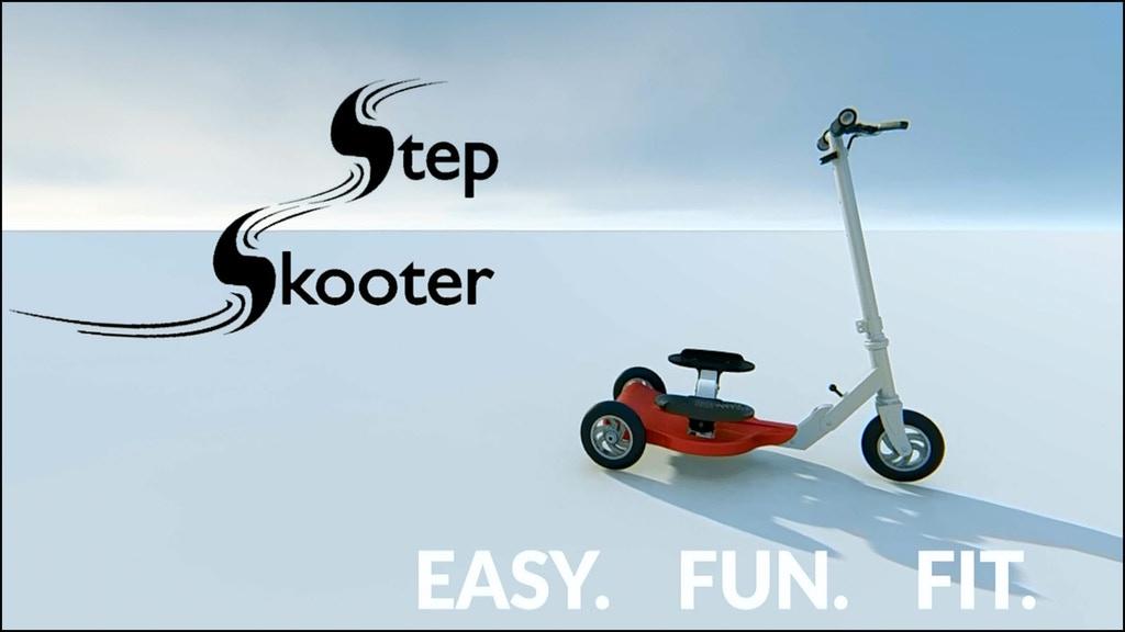 StepSkooter1.jpg