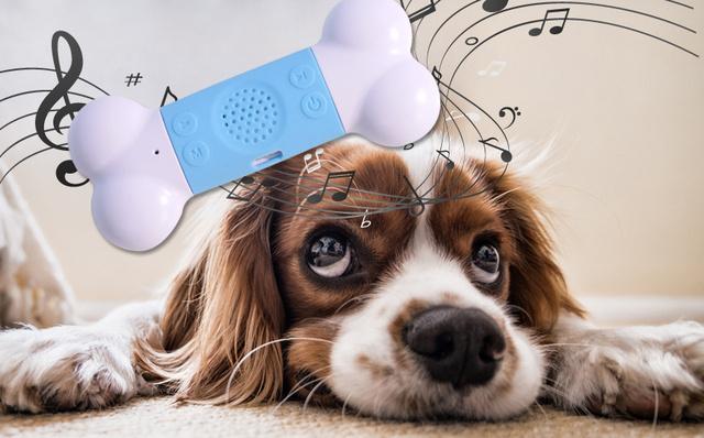 dog music 7.jpg