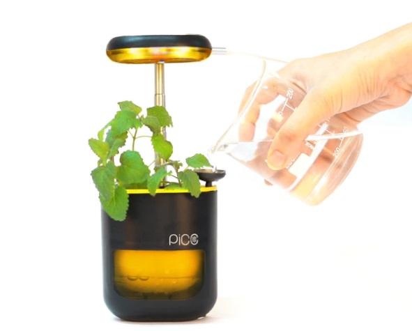 planter 1.jpg