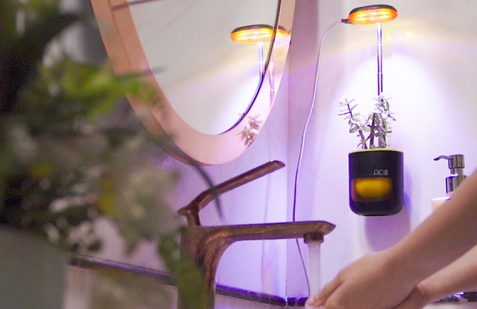 planter 6.jpg